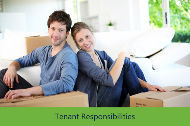 houston property management tenant responsibilities